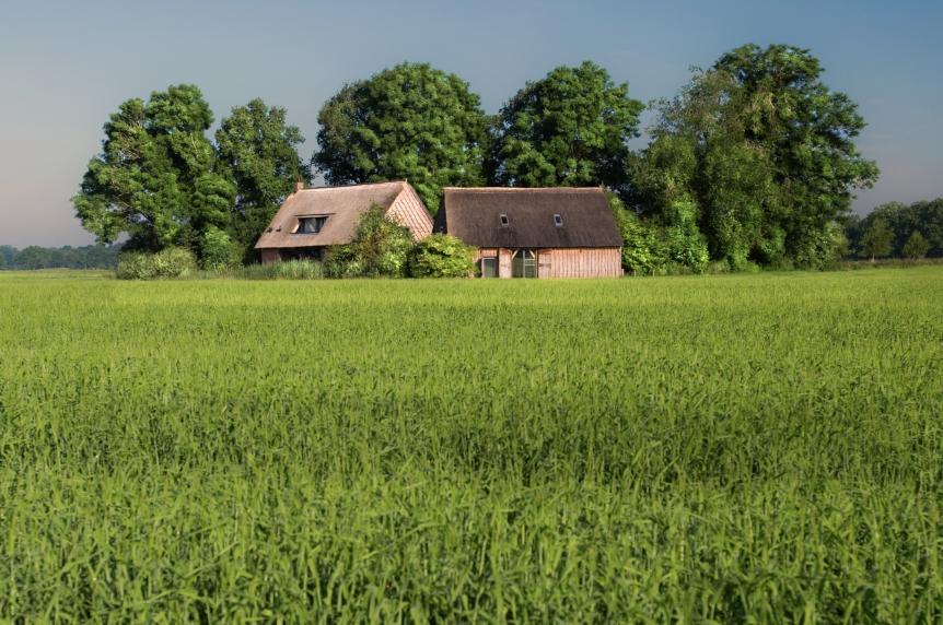 Wilmsboo vakantiehuisje wilmsboo zuidoost drenthe for Vakantiehuisje bos